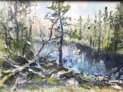 Spring Beaver Pond