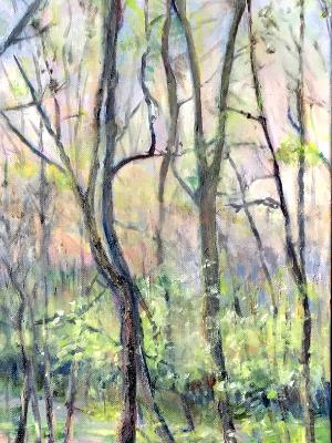 Sold-Rabbit River Springtime