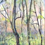 Sold-Rabbit River Springtime
