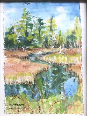 Cherry Creek , Oscoda County-SGH