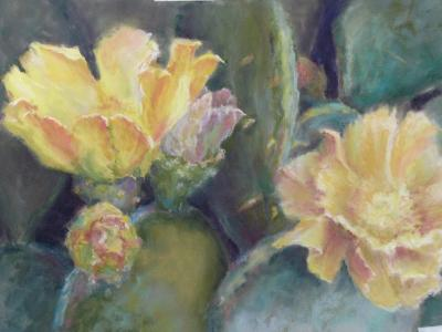 Flowering Prickly Pear, JMH