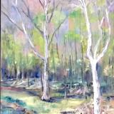 Sycamore Bend -Rabbit River 12x36 SGH
