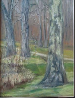 Late Autumn Sycamores- pastel SGH