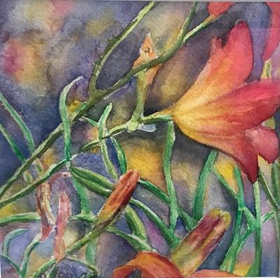 Day Lily Bloom and Buds/ Framed watercolorSGH