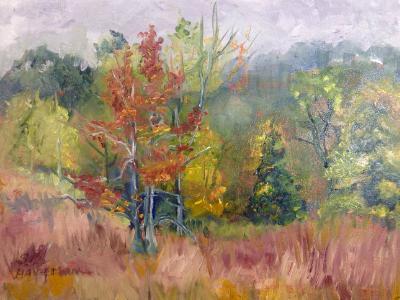 Sold-Pierce Cedar cedar creek view