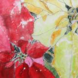 Poinsettia Sparkle