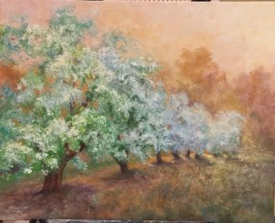 Last Light in the Orchard